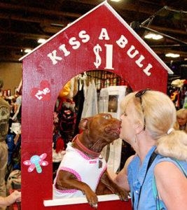 paris-pitbull-kissing-booth